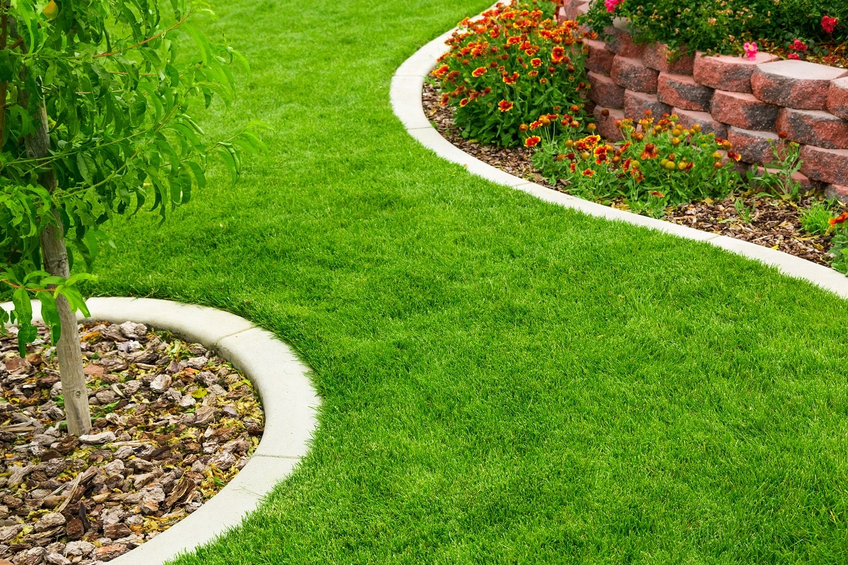 espace vert en pelouse synthétique